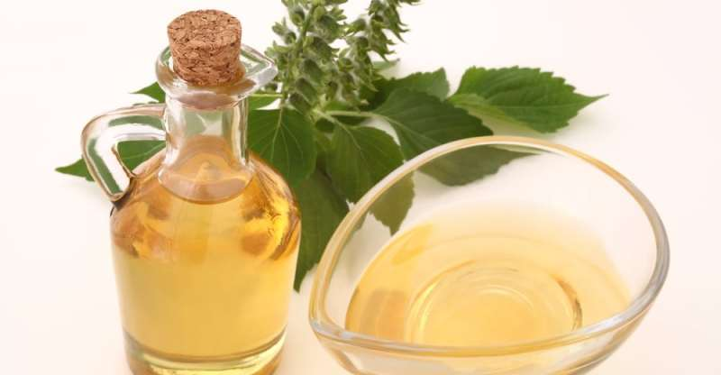 13 Amazing Benefits of Perilla Seed Oil