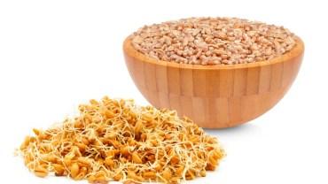 11 Amazing Health Benefits of Wheat Germ