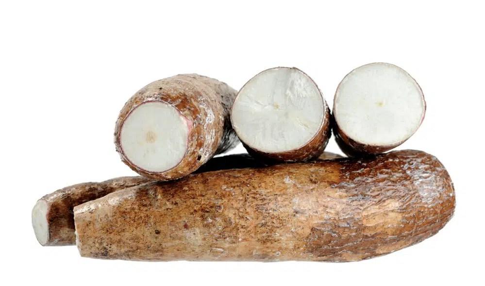 Benefícios para saúde impressionantes da raiz de mandioca