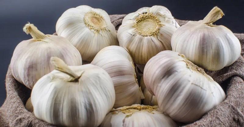 11 Impressive Health Benefits of Garlic Juice