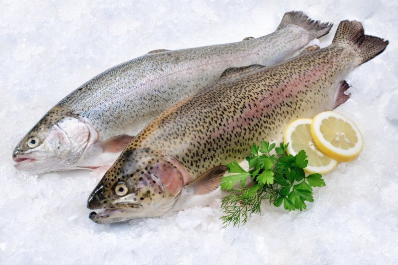 11 Health Benefits of Rainbow Trout
