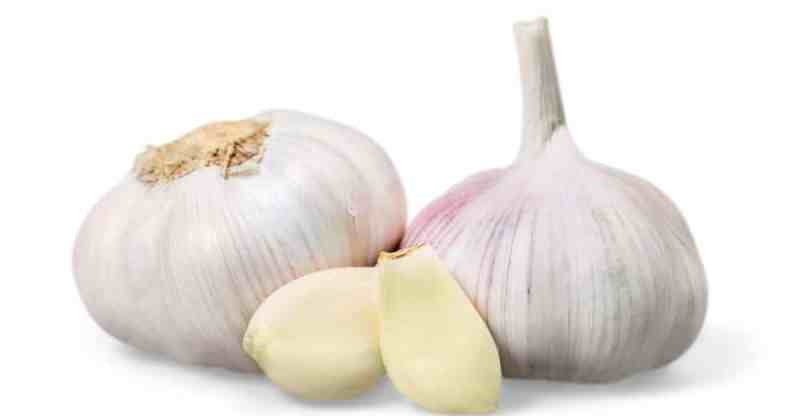 Garlic Nutrition Facts, Benefits & Potential Risk
