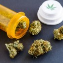 Medical Marijuana (Medical Cannabis) - All You Should Know