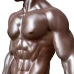 Muscular Activity