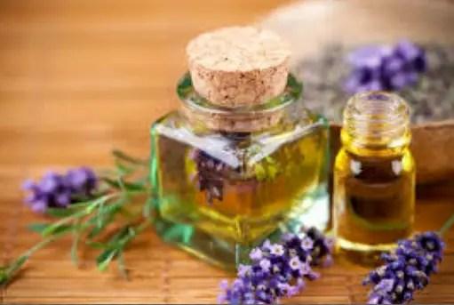 Lavender oil properties