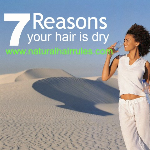 7 Reasons Your Natural Hair is Dry