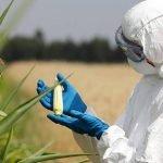 Monsanto-coverup