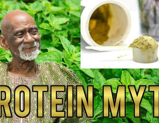 protein myth