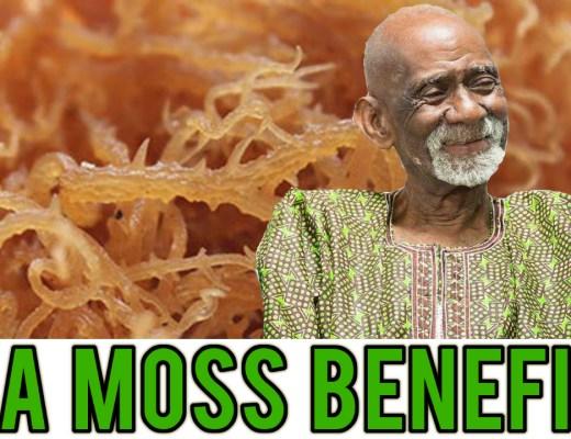 Sea Moss Dr Sebi