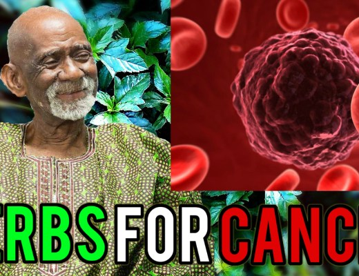 Cancer Dr Sebi