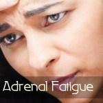 Adrenal Fatigue Chronic Acute Stress Response Blood Pressure Heart Rate Traffic Jam Work Related Stressors Natural Medicine Center Lakeland