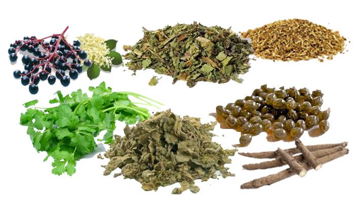 Book Review: Alkaline herbal Medicine Dr Sebi | Melanin and