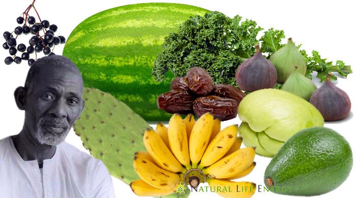 Dr. Sebi Mucus Reducing Alkaline Diet Nutritional Guide