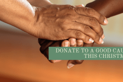 Charities & Social Causes to Donate to