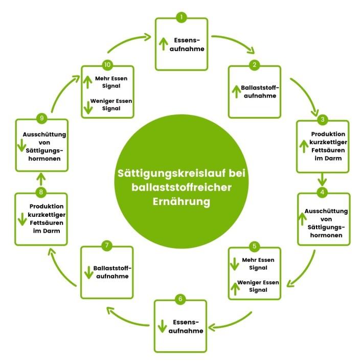 Abnehmen mit Ballaststoffen: Sättigungskreislauf Gesund