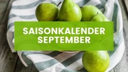 Saisonkalender September