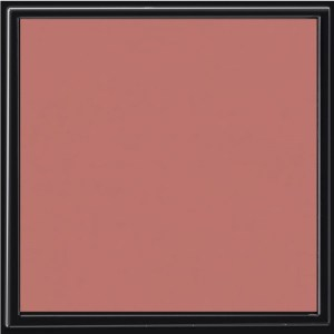 481-thickbox_default