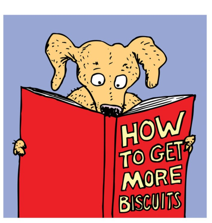 "cane che legge il libro: ""how to get more biscuits"""