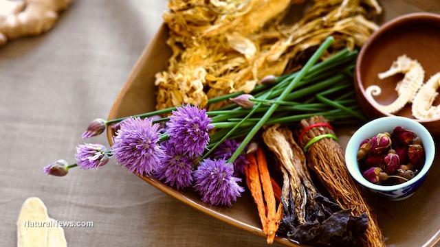 FDA: Plants are no medicine