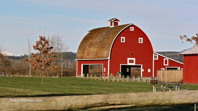 Iowa farmers