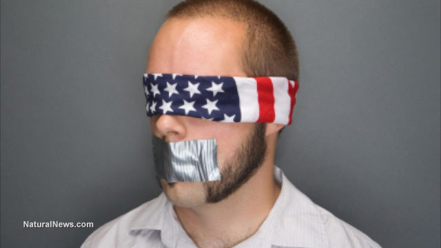 Image result for image american flag blindfold