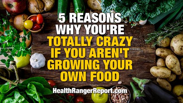 Food self-reliance