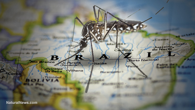 Zika hoax