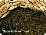 https://i1.wp.com/www.naturalnews.com/gallery/photoscom/soil.jpg