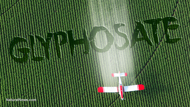 Image: Pesticide chemicals really did originate with the Third Reich, were used to kill people during the Holocaust