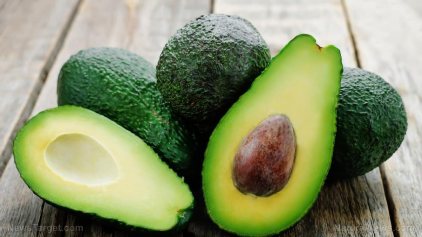 Image: GOOD FATS HEAL: After conventional medicine failed, five-year-old cured of epilepsy by eating hundreds of avocados