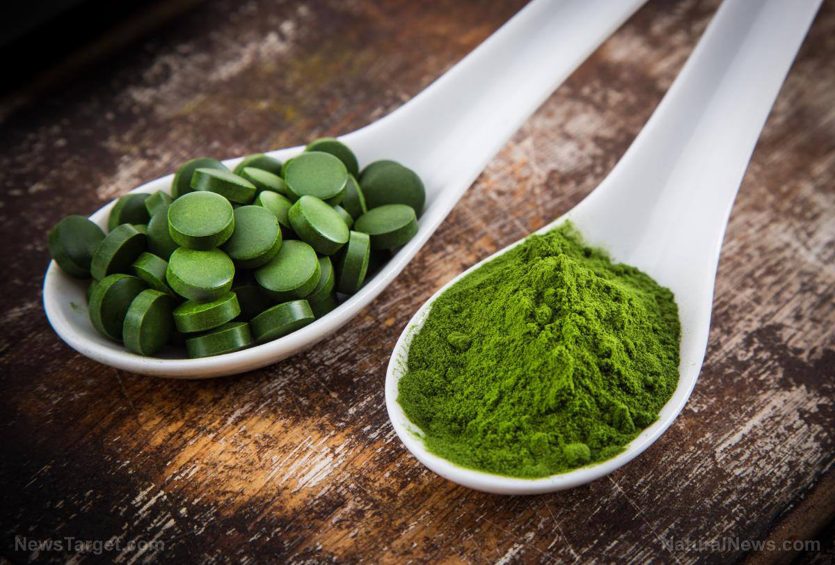 Image: 9 Reasons to add Chlorella superfood to your diet