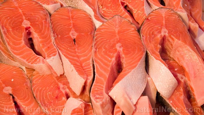 圖像:預防阿爾茨海默症可能像吃這5種常見食物一樣容易