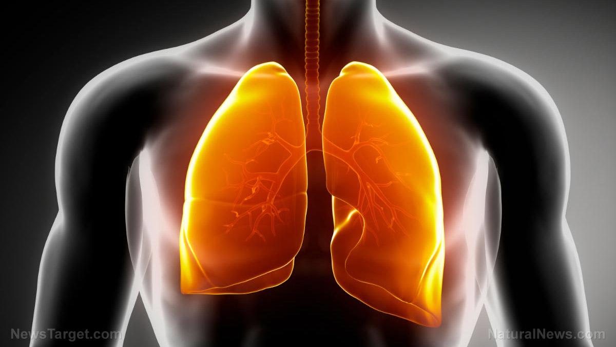 圖像:10種方式來清除你的髒肺