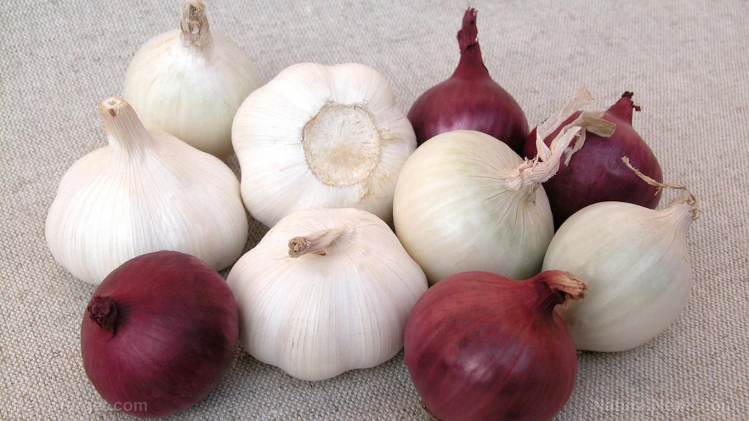 Image: Reduce your risk of breast cancer by eating more onions and garlic: Research