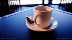 Image: A dangerous brew: Plastic teabags release BILLIONS of microplastics particles into your drink