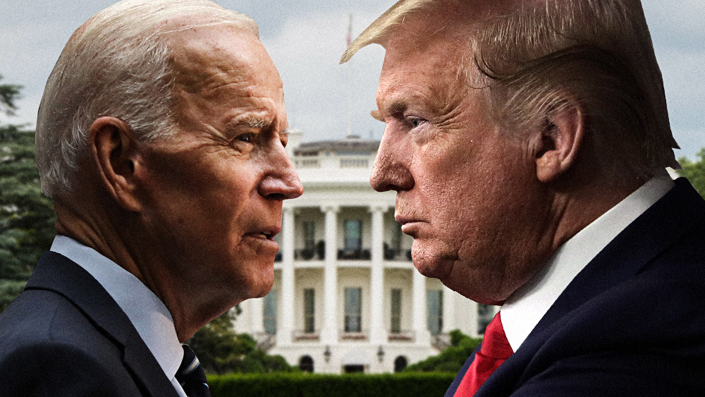 """Image: AP calls Michigan, Wisconsin for Biden, but margins of """"victory"""" are much SMALLER than the ballot dump FRAUD that took place in the middle of the night"""