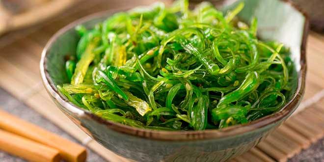 Un suplemento para el metabolismo con algas kelp