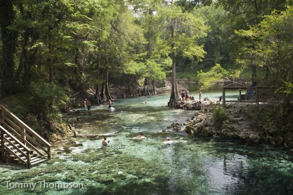 Wakulla Springs Camping