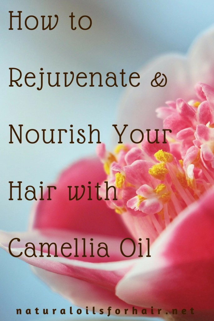 How to Rejuvenate & Nourish Your Hair with Camellia Oil