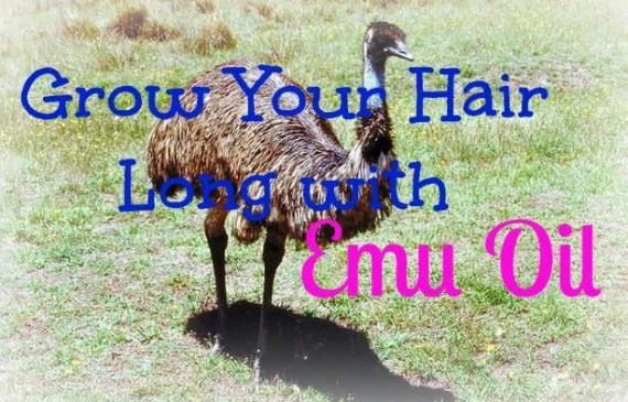 grow-your-hair-long-with-emu-oil