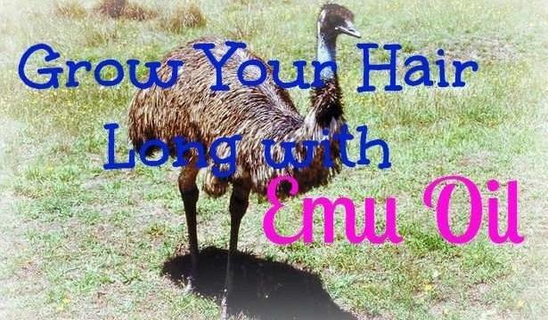 grow-your-hair-long-with-emu-oil