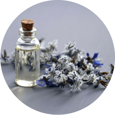 borage-seed-oil-for-hair-loss