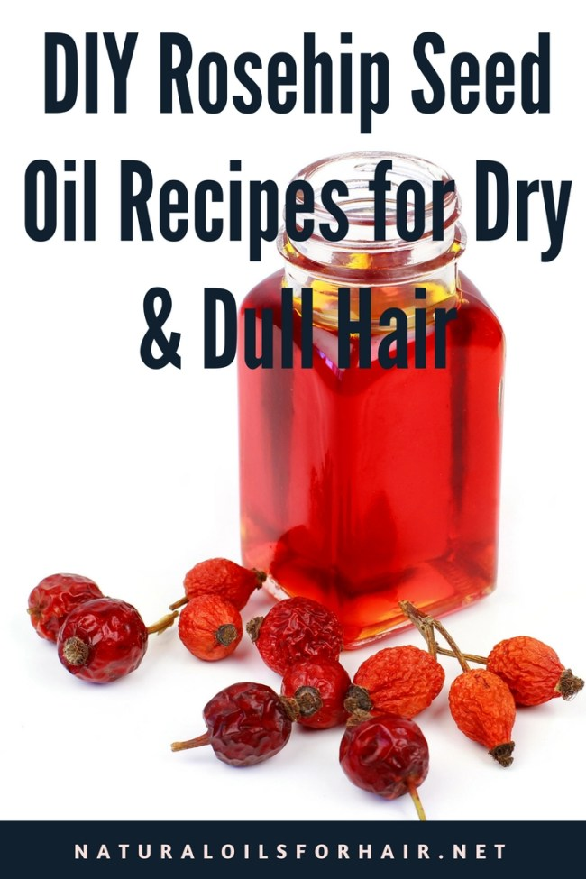 DIY Rosehip Seed Oil Recipes for Dry and Dull Hair