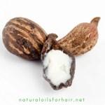Enhance Shiny Hair with Shea Nut Oil