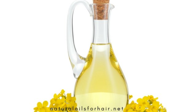 canola oil benefits for hair