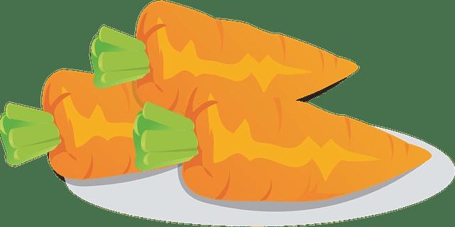 carrot-oil