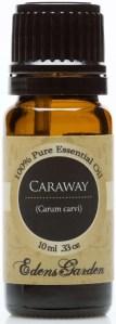edens-garden-caraway-essential-oil