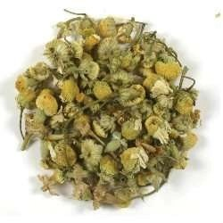 frontier-german-chamomile-flowers
