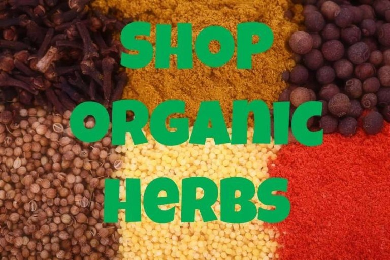 organic herbs for hair store