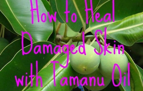how-to-heal-damaged-skin-with-tamanu-oil